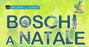 progetti_boschi_a_natale